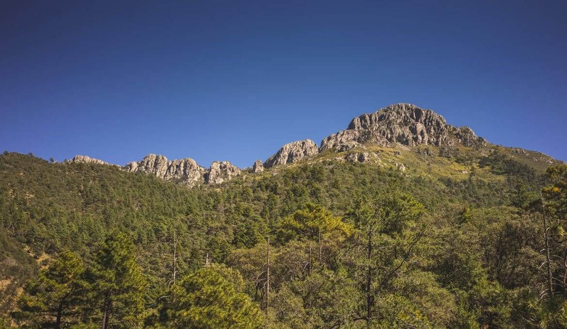 Mount Wrightson Hiking Guide
