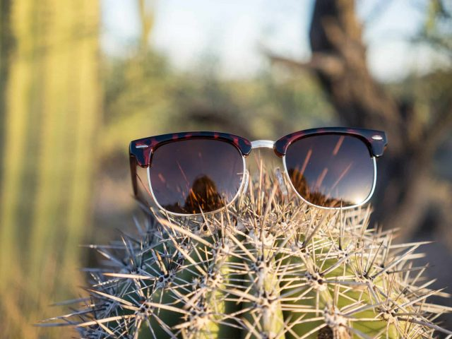 2018 ZenDen Zenmaster Wood Sunglasses Review